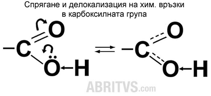 схематично изобразяване на мезомерен ефект и делокализация на химичните връзки в карбоксилната група