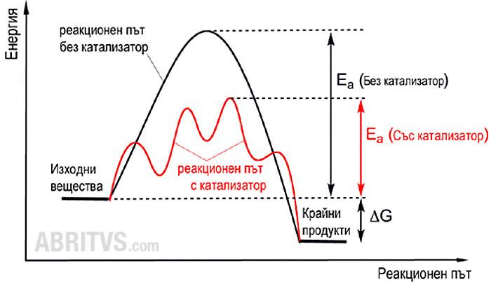 механизъм на катализирана и некатализирана реакция