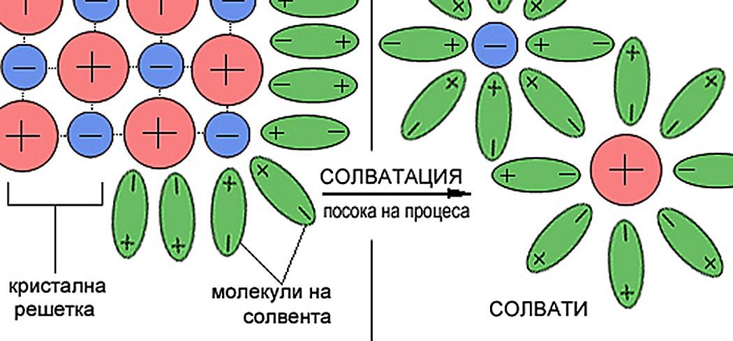 Солватация или как се образуват разтвори