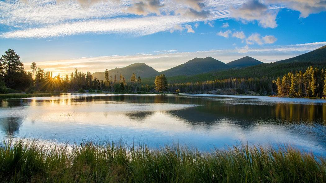 Чистата вода е необходима среда за живот за всеки жив организъм