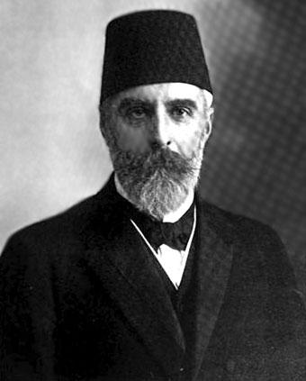 Ахмет Риза, младотурците