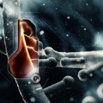 Клетъчно ядро - устройство и функции