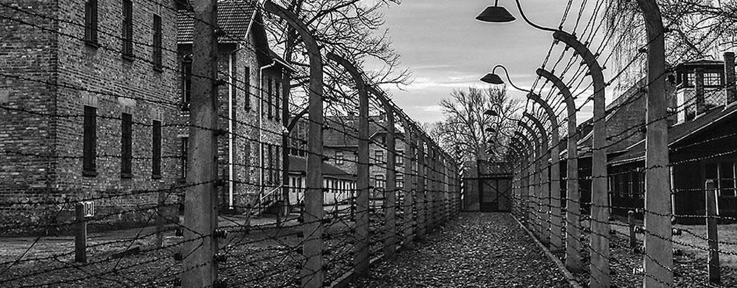 евреи, холокост, нацисти