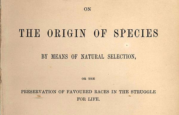 Произход на видовете