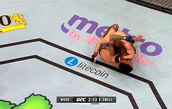 Лайткойн в UFC